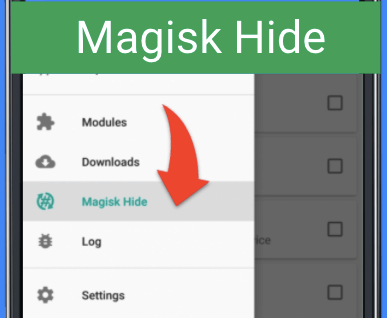 Magisk Hide