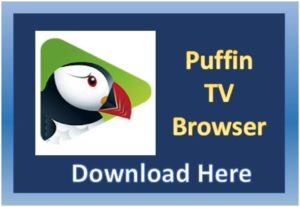 Featured-Image_Puffin-TV.jpg