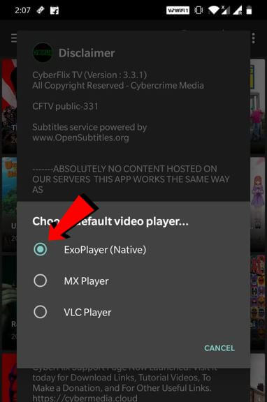 video player for cyberflix